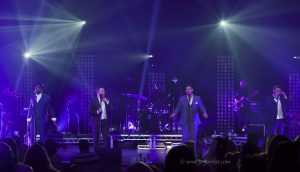 Concert, Liverpool, Live event, Blue