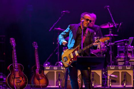 Concert, Liverpool, Live Event, Elvis Costello