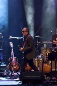 Concert, Liverpool, Live Event, Elvis Costello