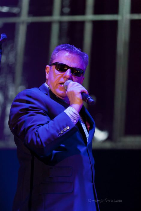 Madness, Concert, Manchester, Live Event