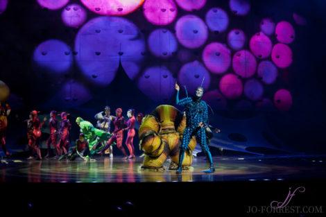Cirque du Soleil, Ovo, Manchester, Jo Forrest, Review