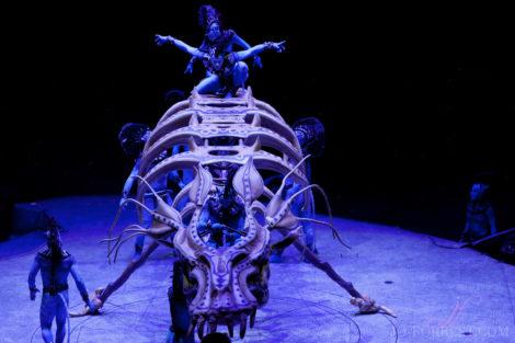 Cirque du Soleil, Toruk, Circus, Review, Jo Forrest, Theatre